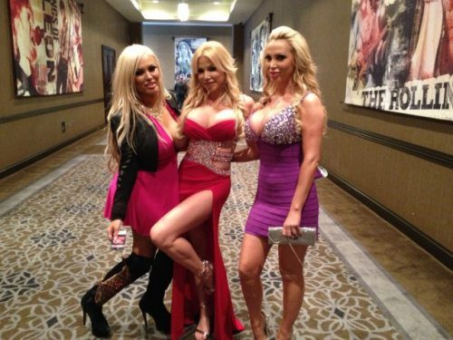 AVN Awards 2013 (12)