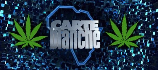 Carte Blanche Marijuana dagga