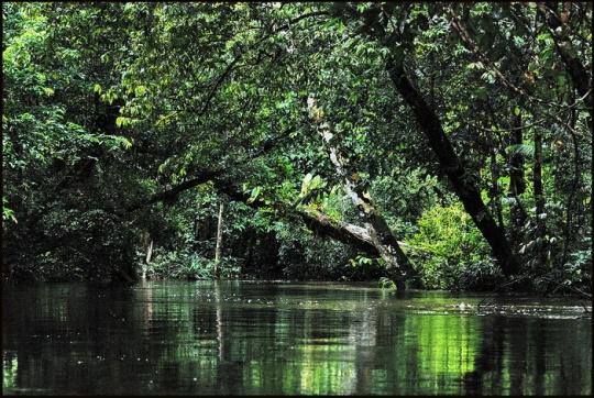 Brunei-river-at-longhouse-edit1