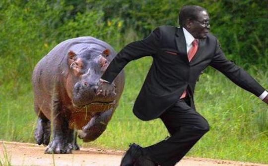 Mugabe Falls (6)
