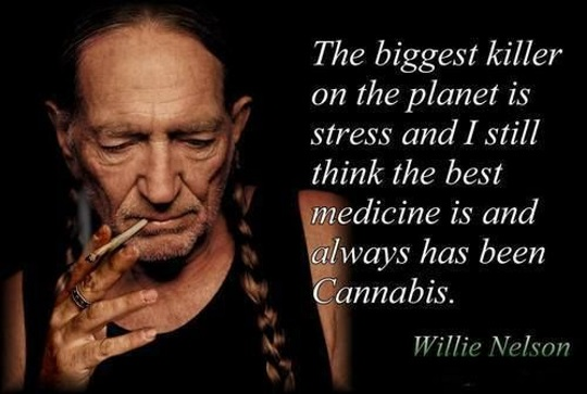 Willie-Nelson-weed-stores and quote