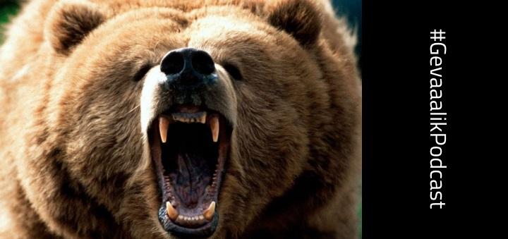 Gevaaalik Podcast #62 - As 'n beer jou by die ballas het