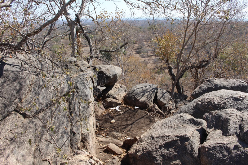 Dag 5 in die Krugerwildtuin (6)