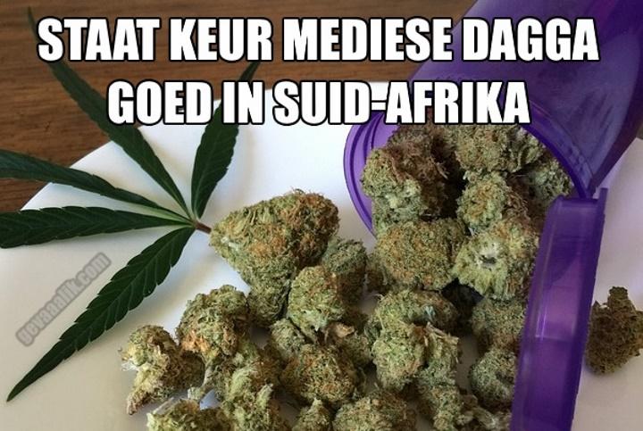 mediese dagga in Suid-Afrika