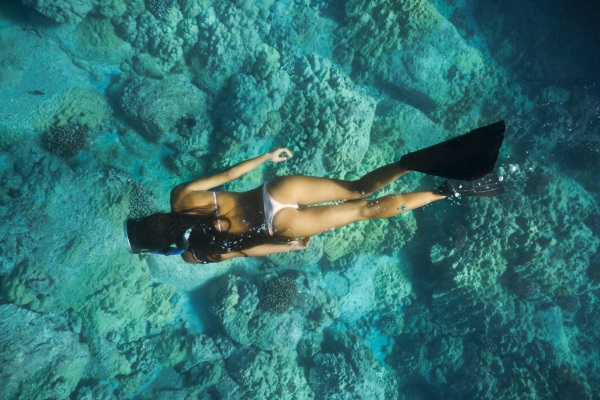 Snorkeling Mozambique