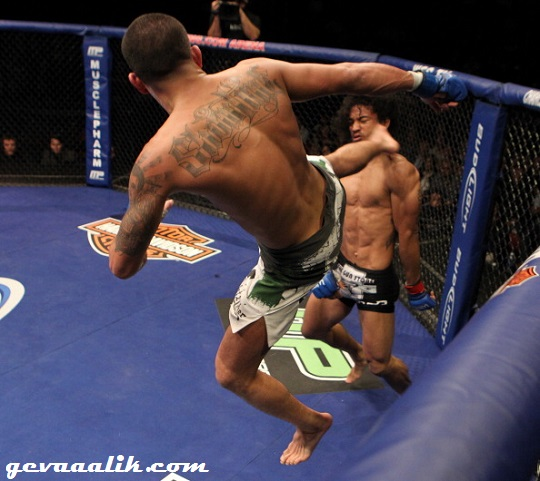 Anthony Pettis Knockout kick