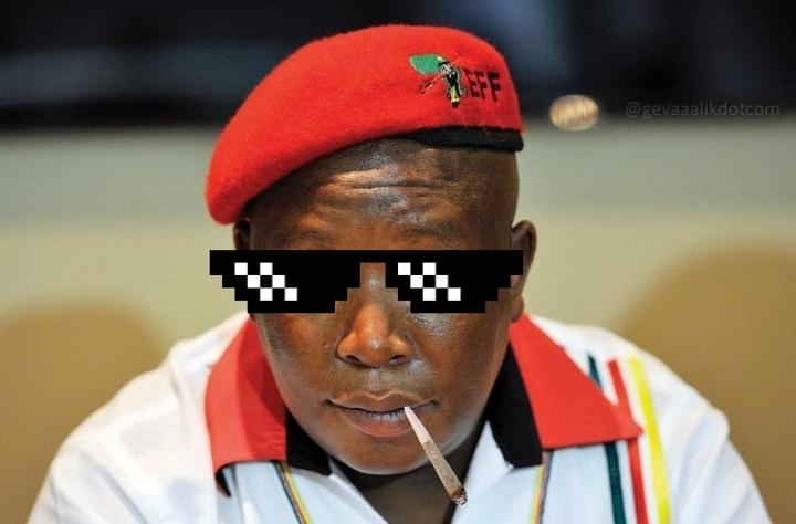 Dinsdagram - Julius Malema approved