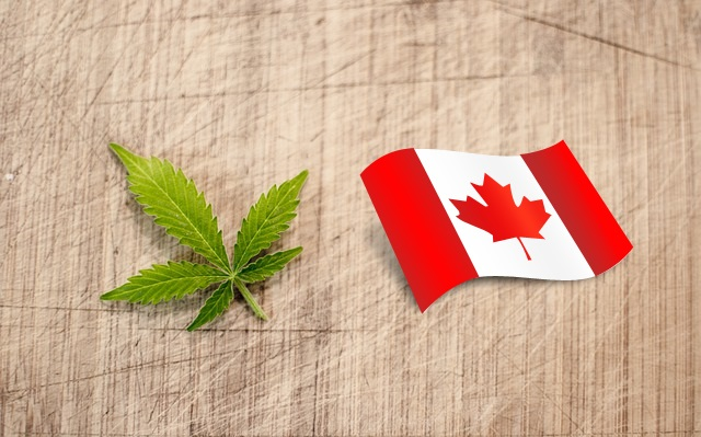 buy cannabis oil canada