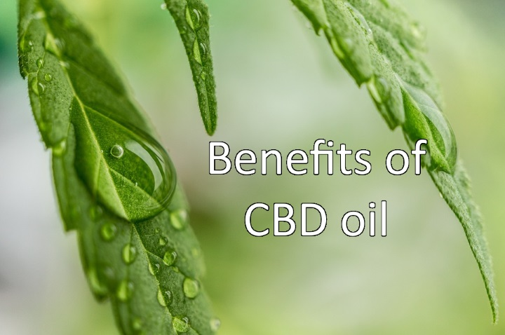 What are the benefits of CBD oil