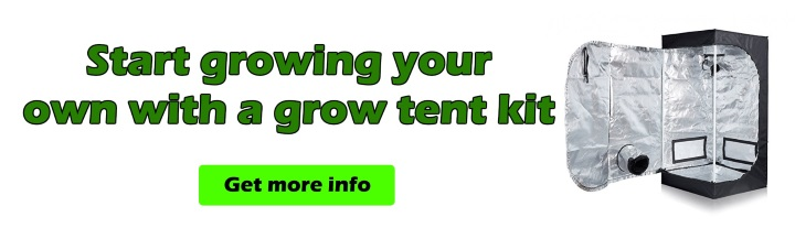 grow tent kit for cannabis seeds South Africa