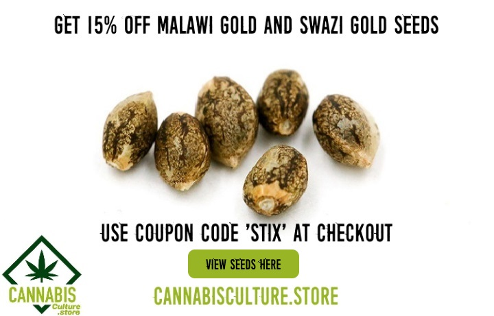 The 4 best South African cannabis strains - gevaaalik com