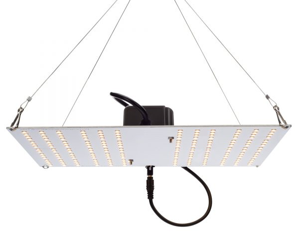 LED Grow Lights South Africa - HLG100