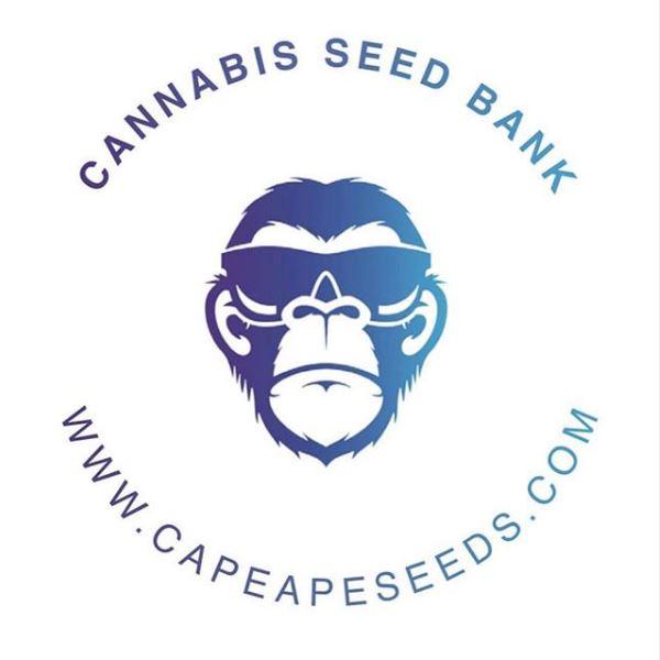 Cape Ape Cannabis Seed Bank